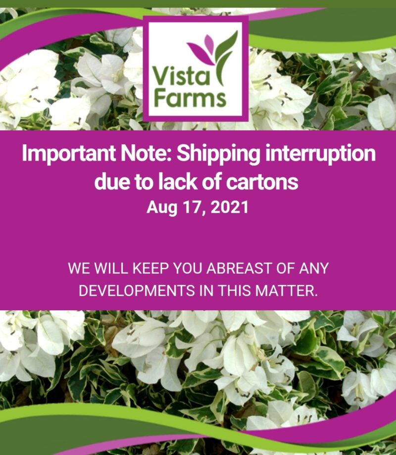 Shipping interruption due to lack of cartons